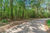 00 County Road 360 Moss Forest Drive, Splendora, TX 77372 (MLS #41238782) :: Michele Harmon Team