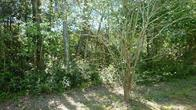 000 Summer Lane, Huntsville, TX 77340 (MLS #41457572) :: Fairwater Westmont Real Estate