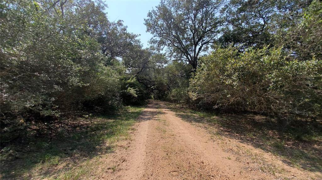 165.3 acres Walnut Street - Photo 1