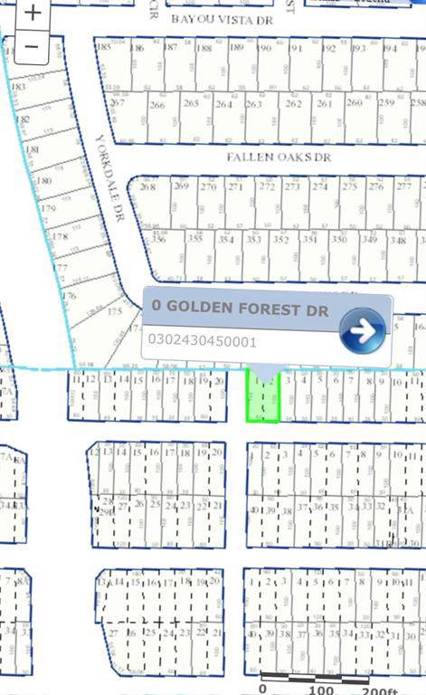 TBD Golden Forest Drive - Photo 1