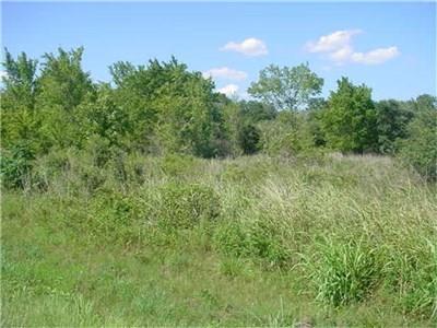 0 Hwy 71 South, Garwood, TX 77442 (MLS #42149931) :: Fairwater Westmont Real Estate