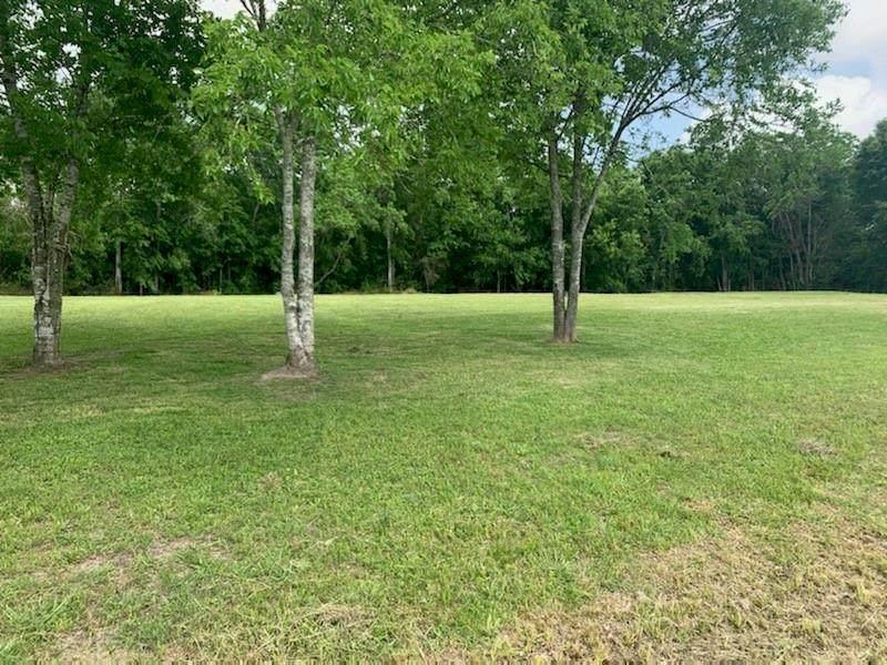 0 Pine Meadow Drive - Photo 1