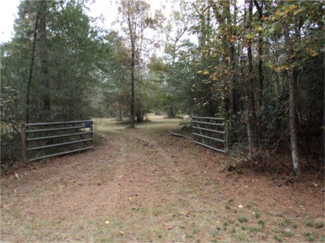 30411 Becky Lane, Magnolia, TX 77354 (MLS #42575184) :: Giorgi Real Estate Group