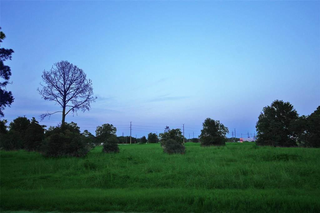 0 Old Damon Road - Photo 1