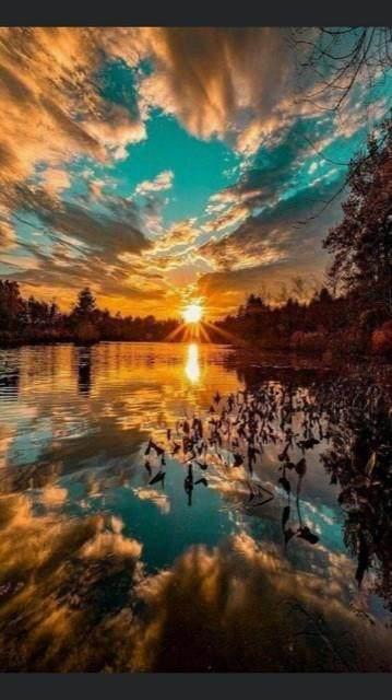 https://bt-photos.global.ssl.fastly.net/harmls/orig_boomver_1_43779738-2.jpg