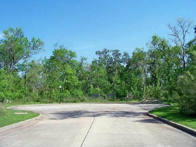 306 Jasper Cove, Missouri City, TX 77459 (MLS #44084941) :: Michele Harmon Team