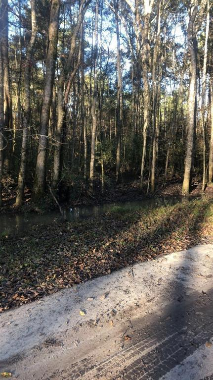 lot 459C-1 Royal Creek Drive, Conroe, TX 77303 (MLS #44580302) :: The Home Branch