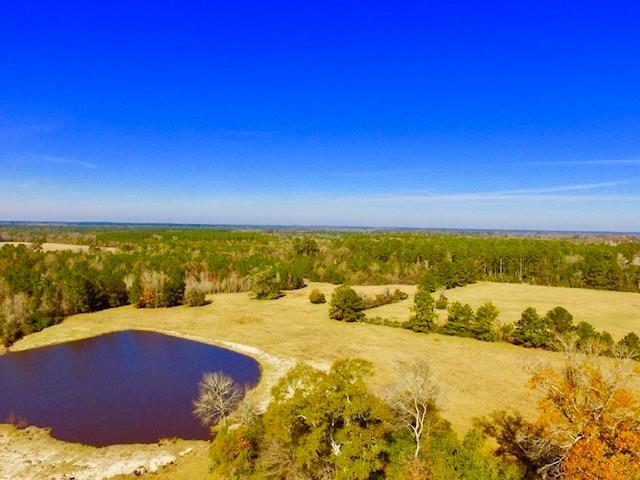 TBD Fodice-2 Road, Pennington, TX 75856 (MLS #44644241) :: Connect Realty