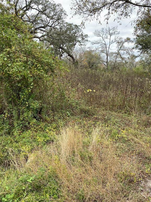 19288 County Road 319, Brazoria, TX 77422 (MLS #45292486) :: Michele Harmon Team