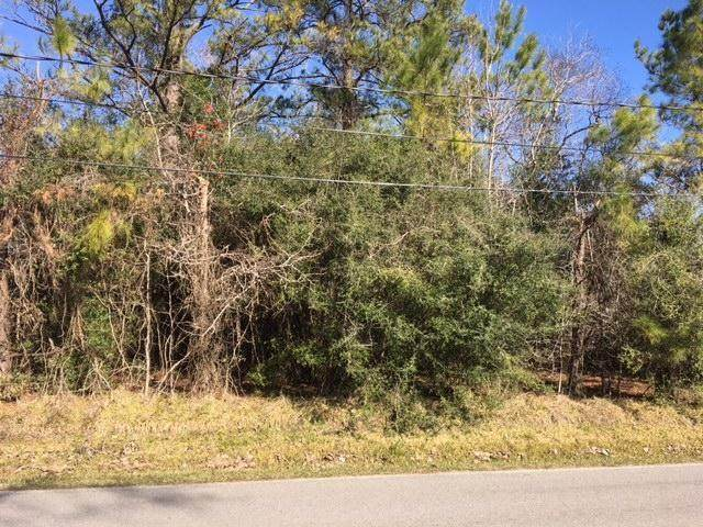 0 Elk Drive, Crosby, TX 77532 (MLS #45927704) :: The Home Branch