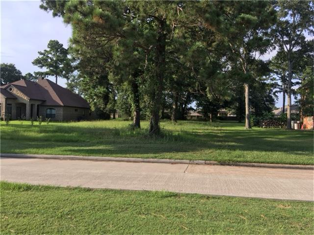Lot 9 Point Aquarius Boulevard, Willis, TX 77318 (MLS #46001449) :: The Home Branch