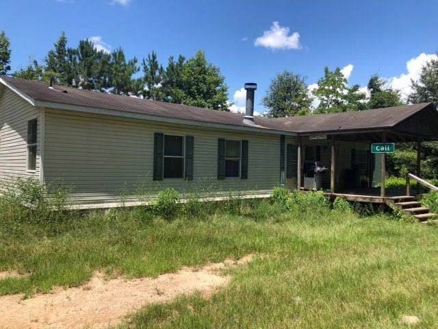 1063 County Road 3102, Call, TX 75933 (MLS #46034359) :: Texas Home Shop Realty