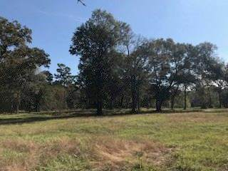0000 North Clear Creek Road, Hockley, TX 77447 (MLS #46250037) :: The Queen Team