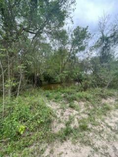 0 Potts Road Road, Humble, TX 77338 (MLS #47196160) :: My BCS Home Real Estate Group
