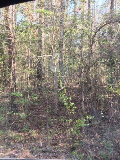 Lot 274/275 Brantly Drive, Livingston, TX 77351 (MLS #47409409) :: The Parodi Team at Realty Associates