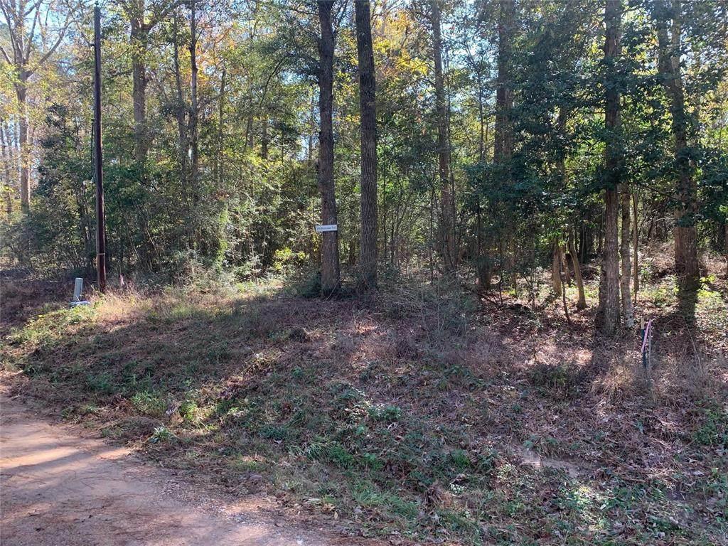 344 Devereaux Trail - Photo 1