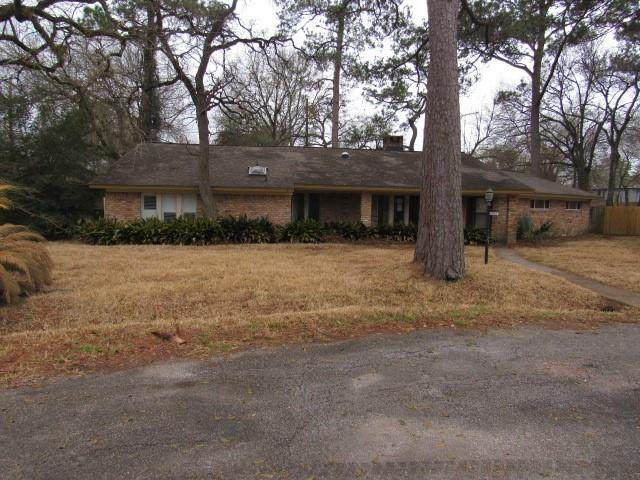 10063 Briarwild Lane, Houston, TX 77080 (MLS #48138670) :: Giorgi Real Estate Group