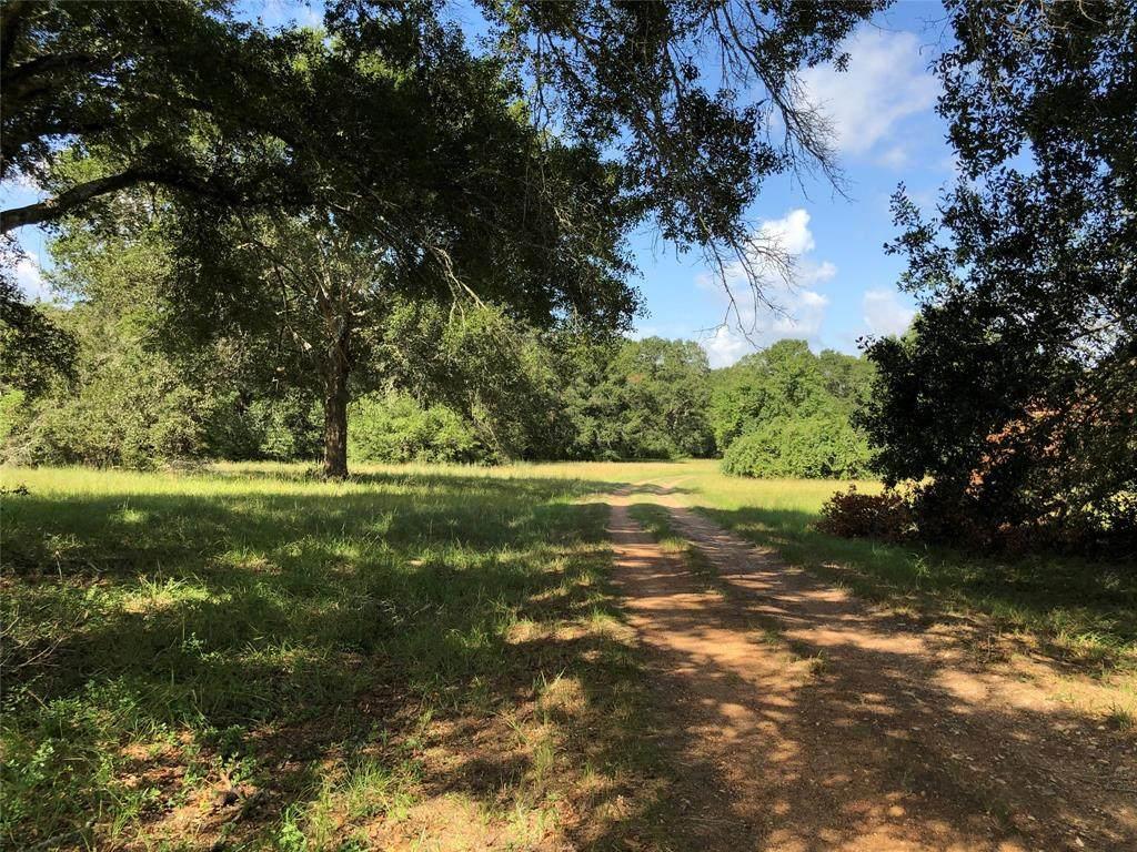 636 Piney Creek Road - Photo 1