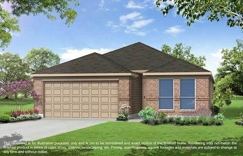 2651 Ridgeback Drive, Rosenberg, TX 77471 (MLS #48518379) :: The Queen Team
