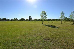 6.3 acres County Road 4865, Dayton, TX 77535 (MLS #48645911) :: Ellison Real Estate Team