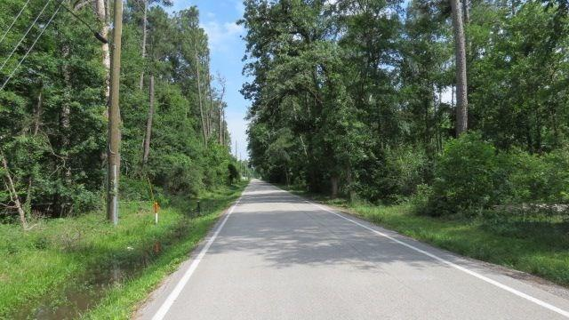 0 Shiloh Church Road Road, Houston, TX 77066 (MLS #49019646) :: Giorgi Real Estate Group