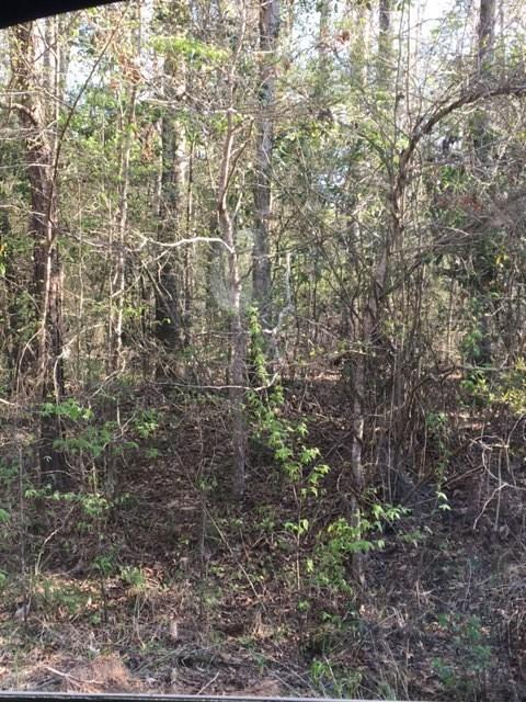 Lot 274/275 Brantly Drive, Livingston, TX 77351 (MLS #49112021) :: Texas Home Shop Realty