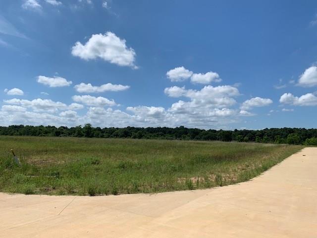 20202 Tealpointe Ridge, Tomball, TX 77377 (MLS #49211284) :: Giorgi Real Estate Group