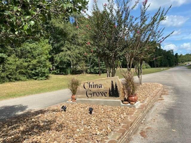 15512 China Grove Lane - Photo 1