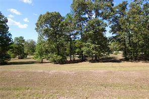 77 Hillsborough Drive, Huntsville, TX 77340 (MLS #50055242) :: Ellison Real Estate Team
