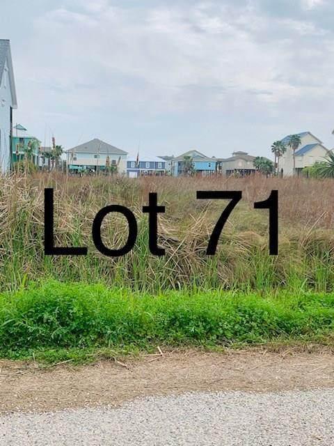 TBD71 Whooping Crane Street, Port O Connor, TX 77982 (MLS #50923978) :: The Parodi Team at Realty Associates