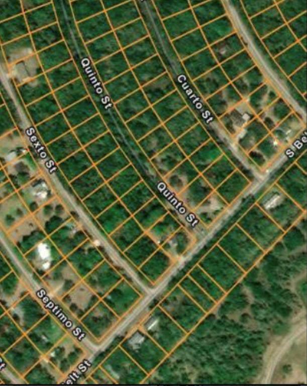 6067-0724-000 Cuarto, Brazoria, TX 77422 (MLS #51520814) :: The SOLD by George Team