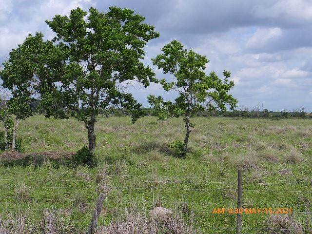 TBD Kemp Road, Needville, TX 77461 (MLS #51526780) :: Green Residential