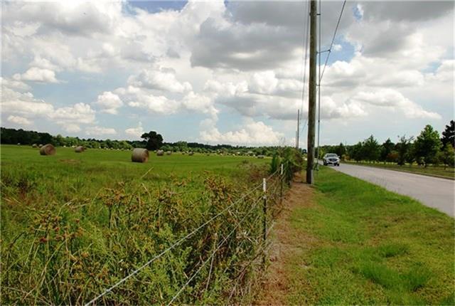 0 Cypress Rosehill Road, Cypress, TX 77429 (MLS #51650843) :: See Tim Sell