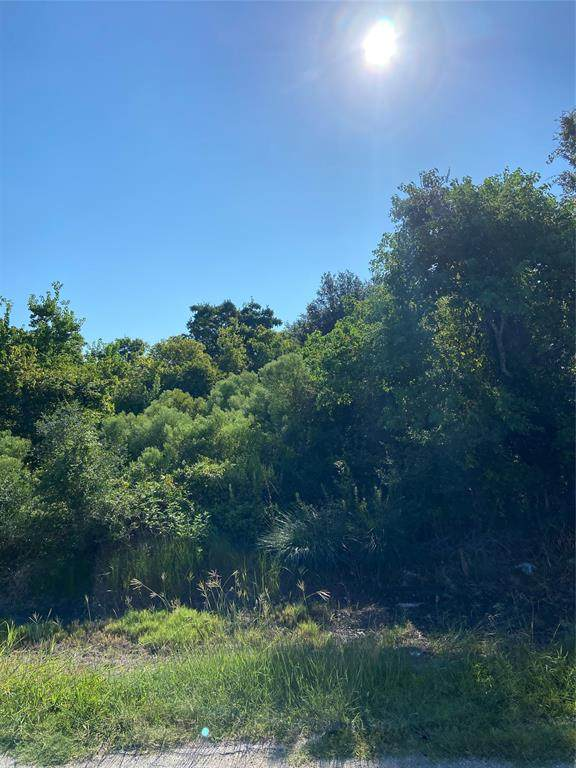 lot 13 13th St, San Leon, TX 77539 (MLS #52029871) :: The SOLD by George Team