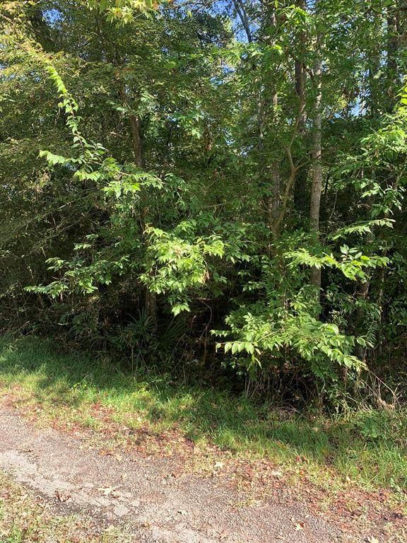 Lot 6 Woodduck Lane - Photo 1