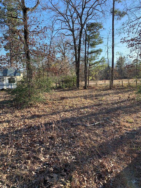 Lot 7 & 8 Woodland Shores Drive, Point Blank, TX 77364 (MLS #52763613) :: The Bly Team