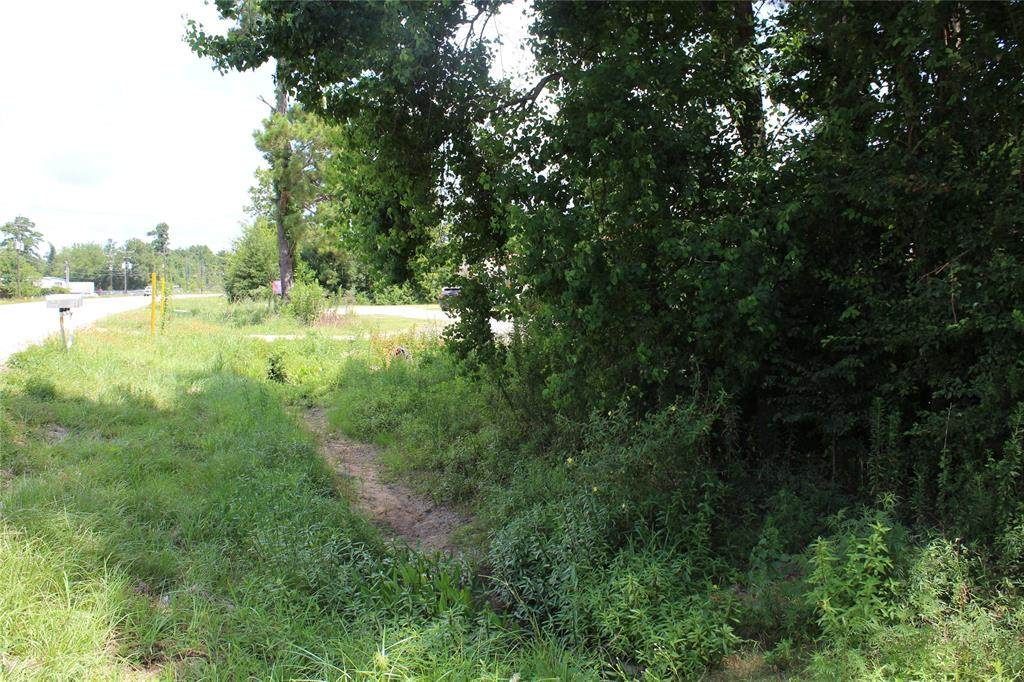 17369 Fm 1485 Road - Photo 1