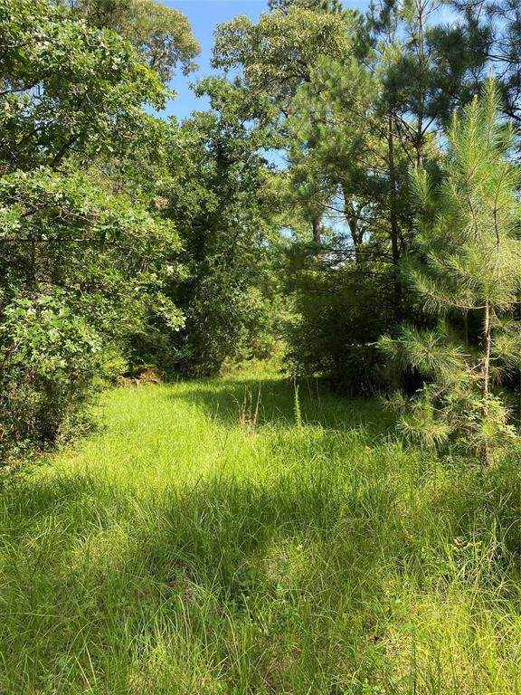 Lot 33A Rose Cir, Magnolia, TX 77355 (MLS #53362313) :: The SOLD by George Team