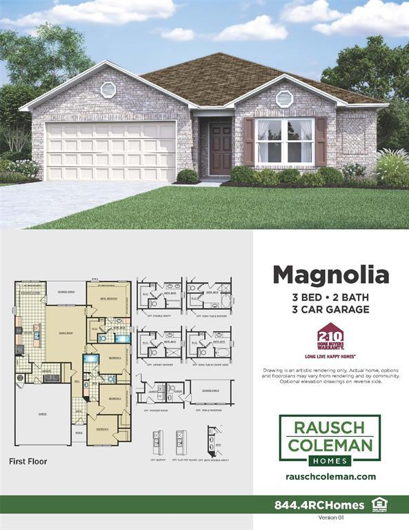175 Courageous Side Way, Magnolia, TX 77354 (MLS #53422681) :: Green Residential