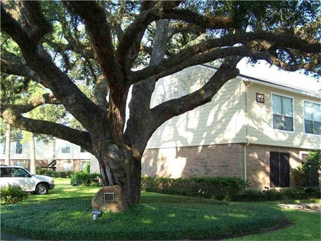 14515 Wunderlich Drive #1608, Houston, TX 77069 (MLS #5352621) :: Texas Home Shop Realty