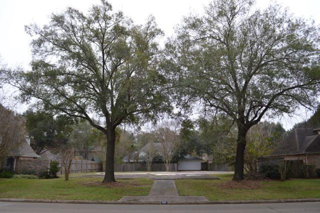 707 Dominion Drive, Katy, TX 77450 (MLS #53935522) :: Fairwater Westmont Real Estate