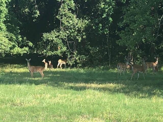 412 Conestoga Trail, Angleton, TX 77515 (MLS #5409858) :: Ellison Real Estate Team