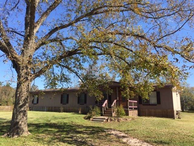 9295 Plum Grove Road, Cleveland, TX 77327 (MLS #54219501) :: Texas Home Shop Realty