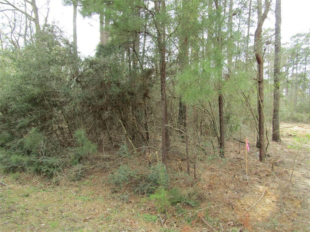 TBD Cross Timbers - Photo 1