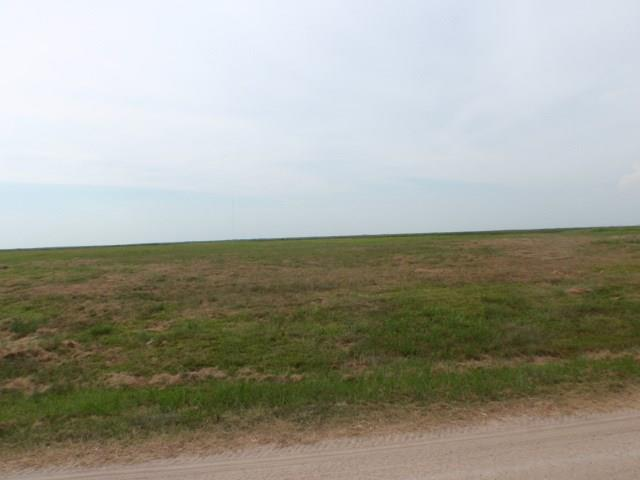 2365 Cr 230, Sargent, TX 77414 (MLS #54451762) :: The Queen Team