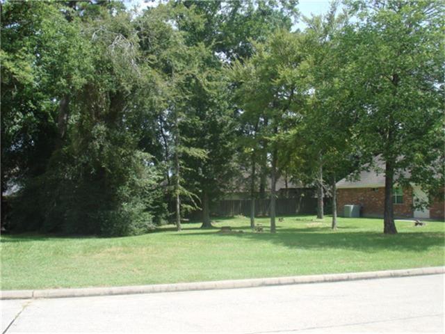 43 Wilmington Road, Montgomery, TX 77356 (MLS #54801837) :: Texas Home Shop Realty