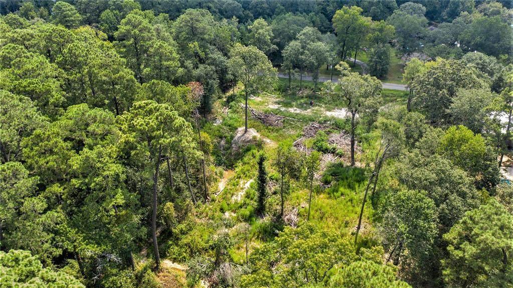 29019 South Plum Creek Drive - Photo 1