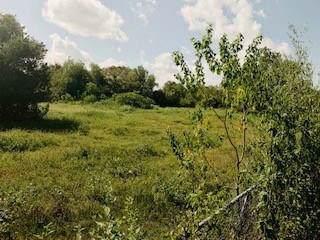 0 Verhalen Road, Alvin, TX 77511 (MLS #55366130) :: Phyllis Foster Real Estate