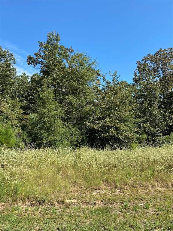 0 Hidden Cove Road, Point Blank, TX 77364 (MLS #5546468) :: Green Residential