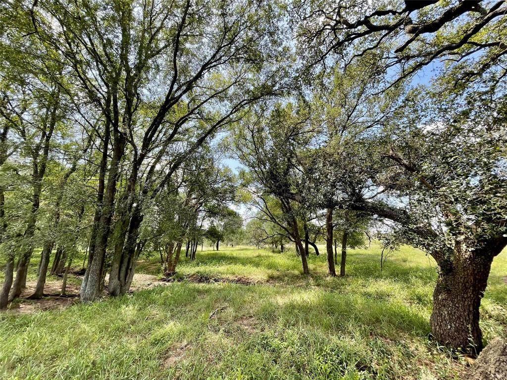 167 Cannon Creek Drive - Photo 1